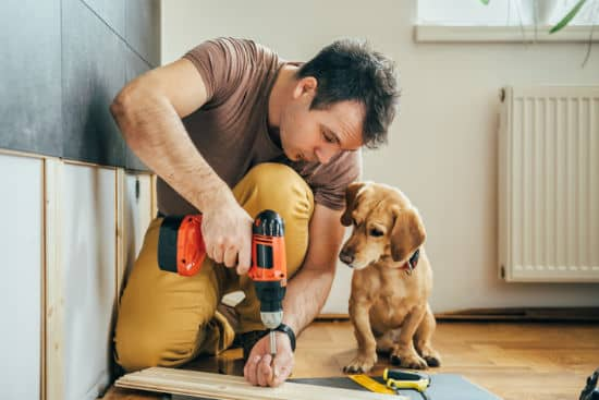 Un bricoleur en train de percer, son chien le regarde
